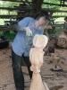 Kiparska delavnica les