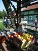 Kmečka tržnica Avgust